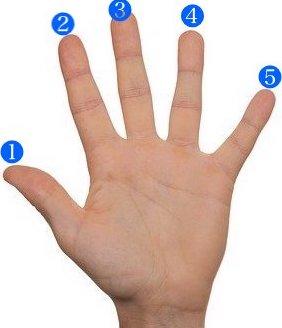 左手の指番号