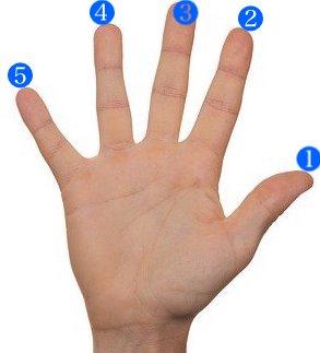 右手の指番号
