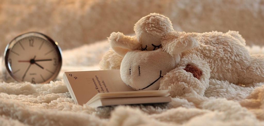 フワフワの毛布の上にいる気持ちよさそうな羊