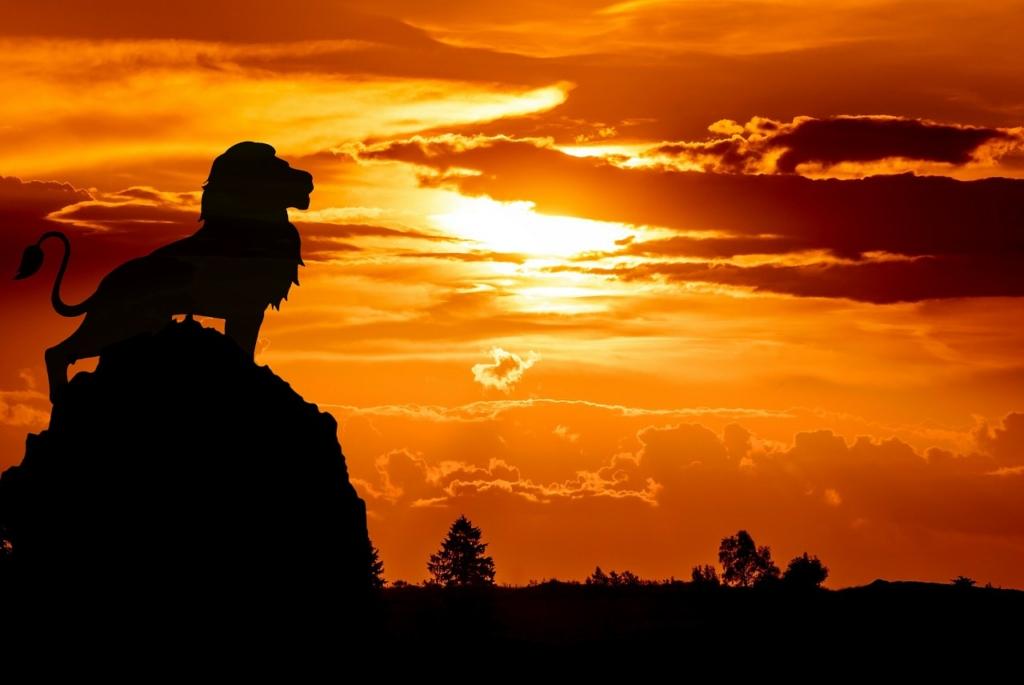 ライオンキング夕日に向かっている画像