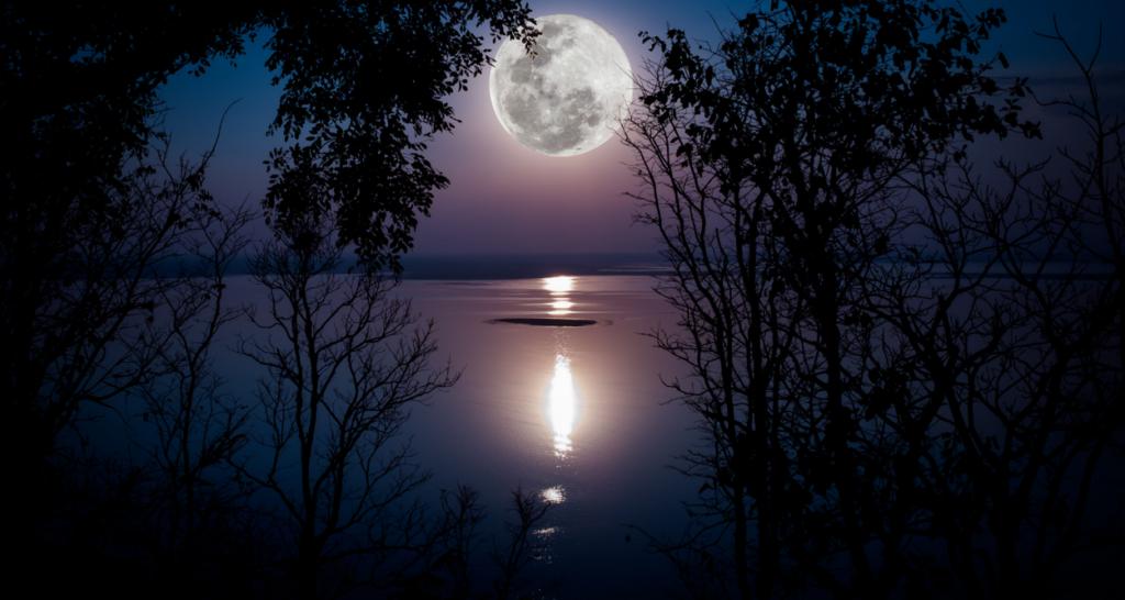 水面に映る月