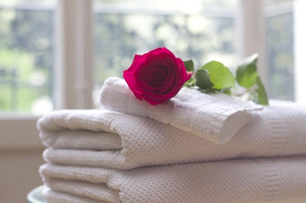 深紅のバラとバスタオル