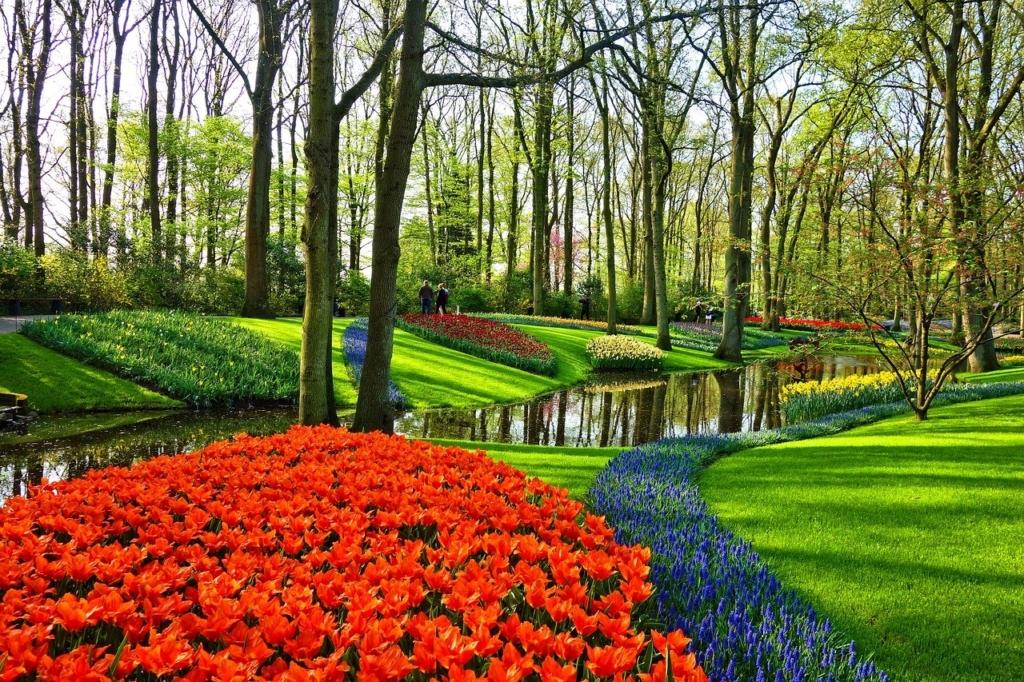花のある森の風景