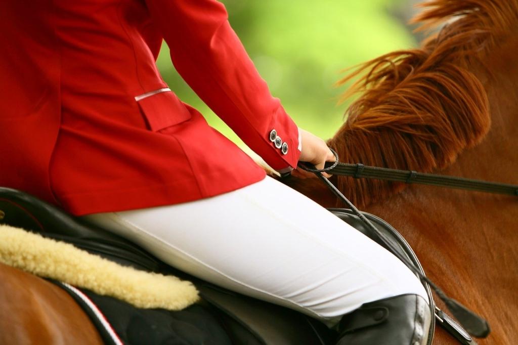 乗馬をしている姿